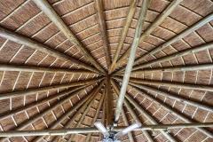 13Albatross_roof